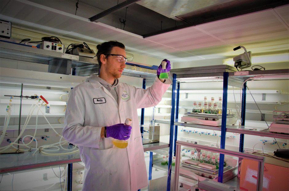 Moritz Koch in the lab looking at bioplastic