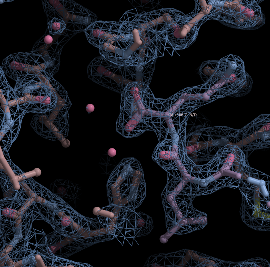 Image of crystalline structure of SARS-CoV-2
