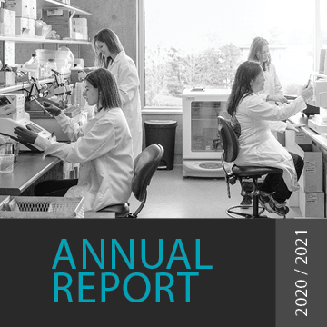 LSI Annual Report Thumbnail Image